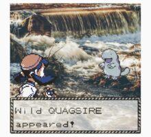 Quagsire Encounter by Alexander S