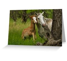 Born Wild  Greeting Card