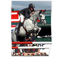 Jumper In Red Horse Portrait Poster