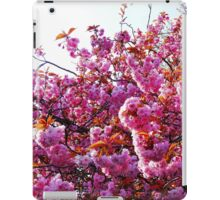 Pink Blossoms iPad iPad Case/Skin