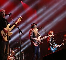 Doobie Brothers - Deni Blues & Roots Festival 2014 by SnaphappyEm