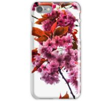 Pink Blossoms -Phone Case- iPhone Case/Skin