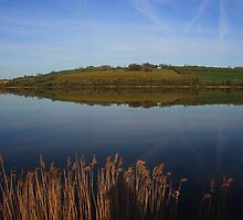 Foyle Reflections by Adrian McGlynn