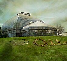 Otts Exotic Plants and Greenhouse - Schwenksville PA USA by MotherNature