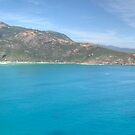 Norman Bay Wilsons Promontory, Panorama by Adrian Paul