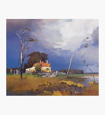 Ash Island Photographic Print