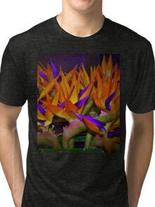Bird flock Tri-blend T-Shirt