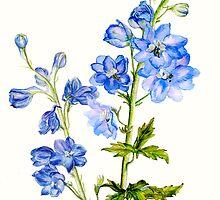 Delphinium blue watercolor art by Sarah Trett