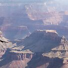 flying over the Grand Canyon by Carol Fan