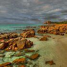 Castle Rock by John Pitman