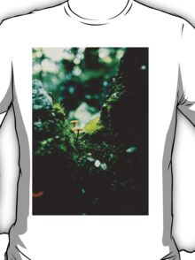 Forest Steps T-Shirt
