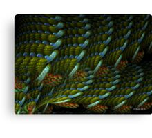 Woven Tapestry  Canvas Print
