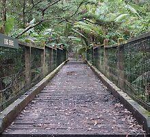 Long Bridge by Emma Holmes
