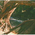 Hidden Paradise - a study - Pt I by strangerandfict