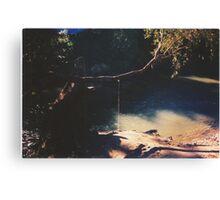 Hidden Paradise - a study - Pt III Canvas Print