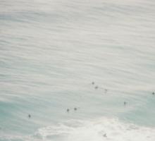 Waves vignette Sticker