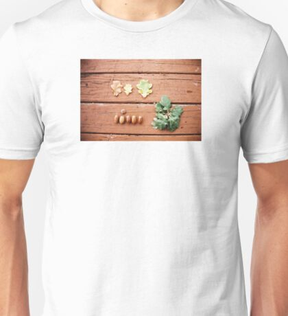 The acorn and the tree. Unisex T-Shirt