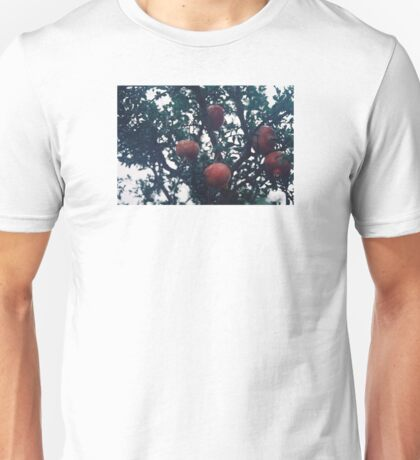Pomegranate. Unisex T-Shirt