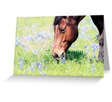 Don't Eat The Bluebonnets Greeting Card