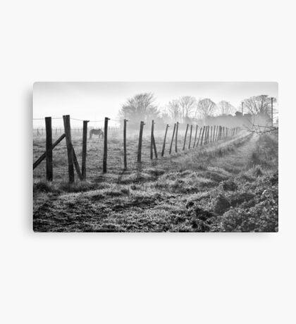 Equine Fence Metal Print
