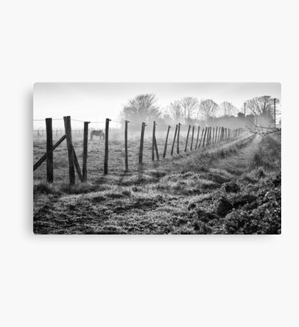 Equine Fence Canvas Print