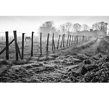 Equine Fence Photographic Print