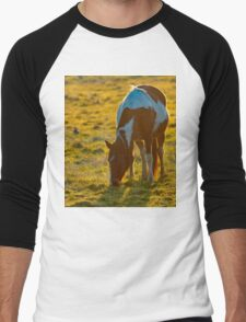 Backlit Horse Men's Baseball ¾ T-Shirt