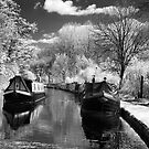 Canal scene - Infra Red by Paul Woloschuk