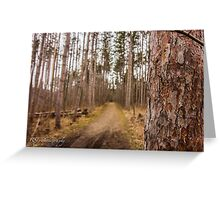 Forest Trails Greeting Card