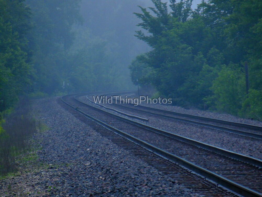 Misty Curve by WildThingPhotos