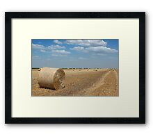 field with straw bale agriculture industry Framed Print