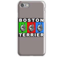 boston warhol triptych iPhone Case/Skin