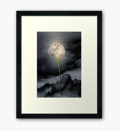 Moon Flower Framed Print