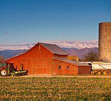 Colorado Front Range Farming  by Bo Insogna