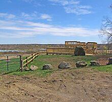 Wetlands Observation Deck by Jack Ryan