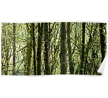 Wildwood Poster
