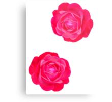 Two pink roses Metal Print