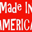Made In AMERICA by Tony  Bazidlo
