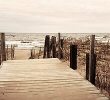 Lake Superior Beach in Duluth Minnesota 1 by Emily Rose