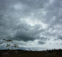 Leaden Skies And Hemlock by Fara