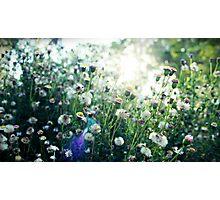 Light streams through Photographic Print