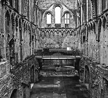 Glastonbury Abbey by eddiechui