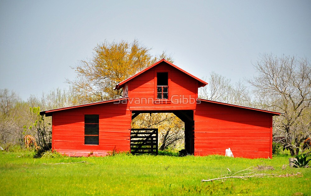 Red Barn by Savannah Gibbs