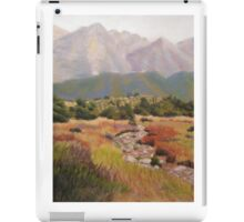 Dry Creek Bed iPad Case/Skin