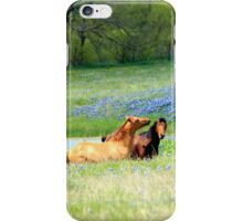 Horses & Bluebonnets iPhone Case/Skin