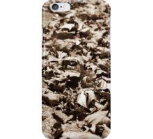 Crunchies iPhone Case/Skin