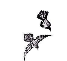 Birds in Flight by Michael Kaczor