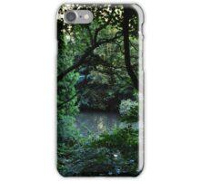 Nature Glimpse iPhone Case/Skin