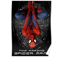 The Amazing Spider Man Cosplay Poster