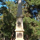 Monument 10th Light Horse by kalaryder